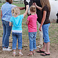 2007_june_hanging_with_the_horses0297