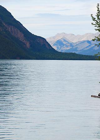 2008 JUNE JULY trip to AK Canada 2090