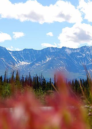 2008 JUNE JULY trip to AK Canada 2143