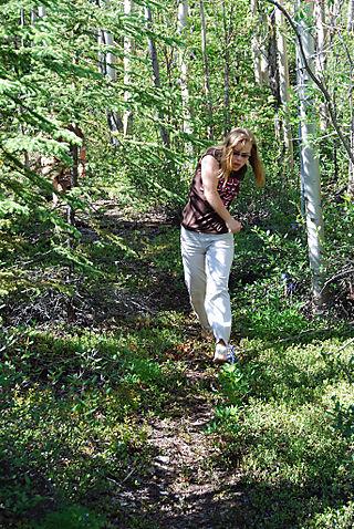 2008 JUNE JULY trip to AK Canada 2158