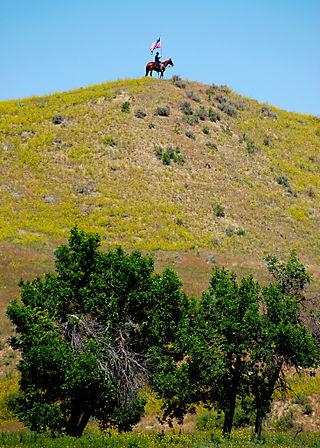 2008 JUNE JULY trip to AK TX pecans 2061