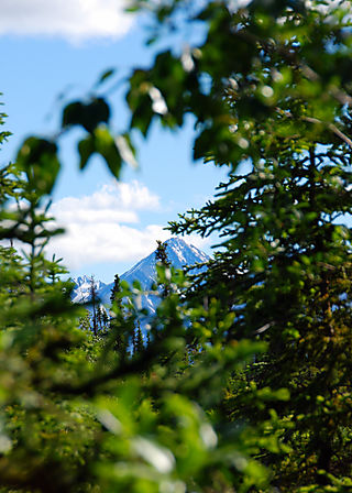 2008 JUNE JULY trip to AK Canada 2149