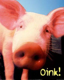 PigArt