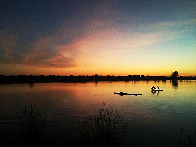 Pelican lake 2