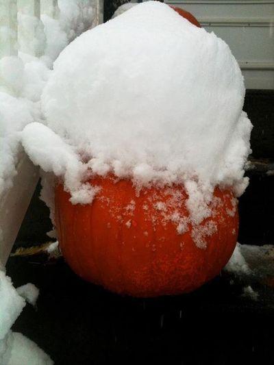 Snow hat pumpkin