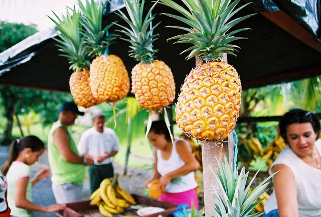 Costa rica pineapple