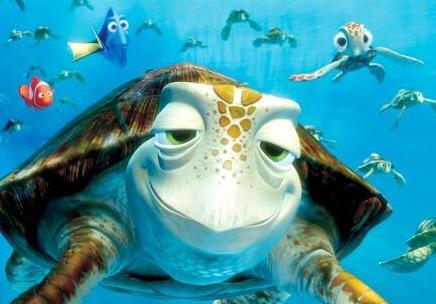 Crush-the-sea-turtle