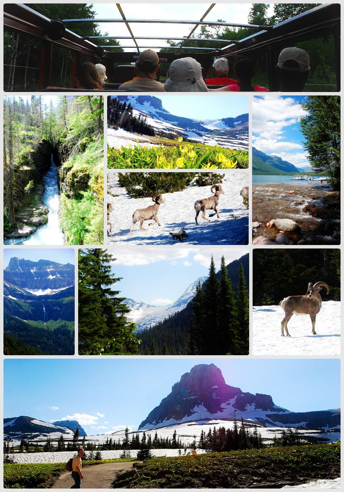 West glacier collage a