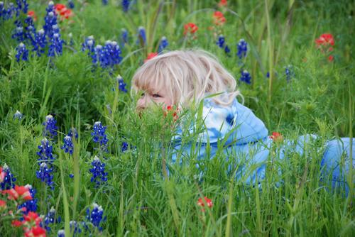 Jenna_hiding_in_bluebonnets0149