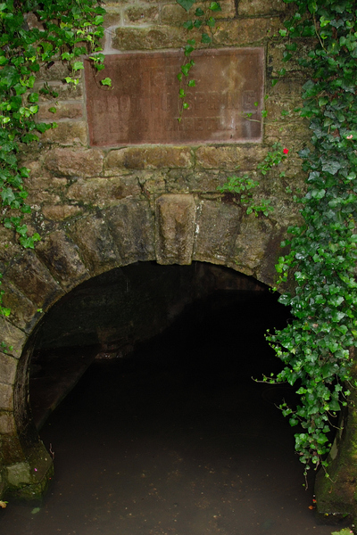 2007_july_as_grotto_spring_10456