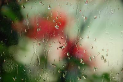 2007_oct_rainy_day_0755