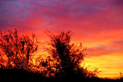2007_nov_sunrise_0851