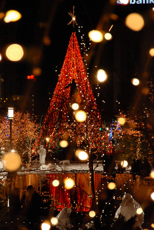2007_dec_lights_on_temple_square__7