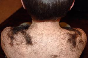2008_jan_smash_haircut_1125