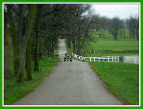 2008_april_ky_horse_park_01_1372